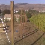 Cedar Fencing 5